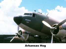 arkansas hog - PL-766